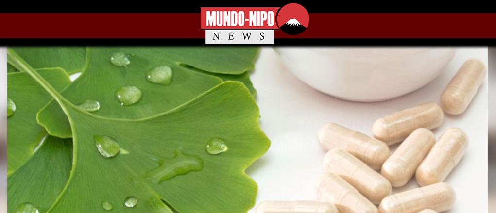 Ginkgo em duas versões: cápsula e folha