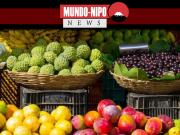 imagem ilustrativa de uma feira de frutas