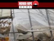 Estragos causados pelo tufão