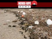 plastico encontrado na praia da Baia de ise